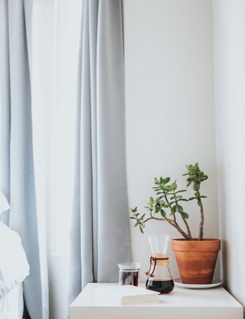 planta en dormitorio