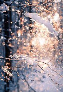 Rama nevada