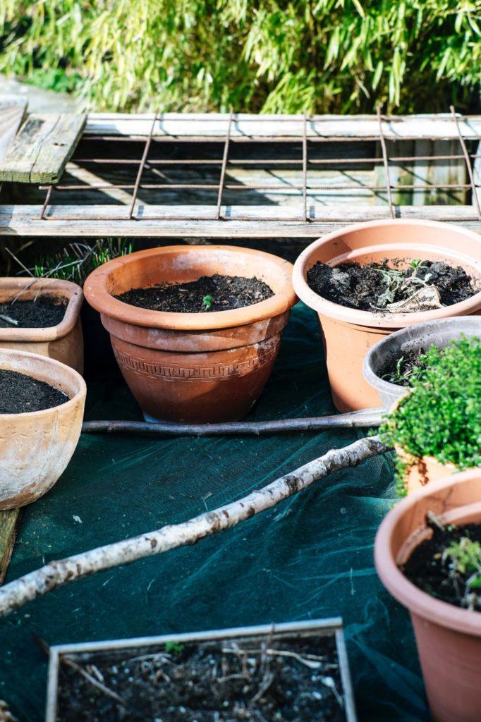 plantar un huerto urbano